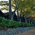 酒田市内の山居倉庫