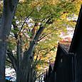 黄葉と山居倉庫